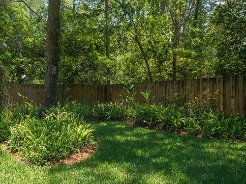 17-Backyard